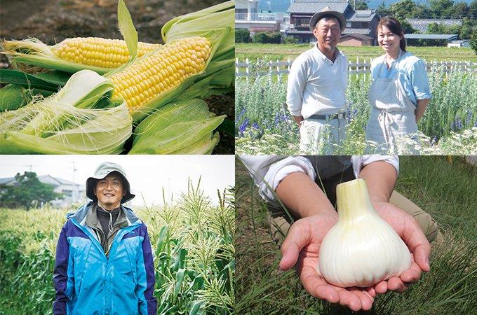 愛知県南知多町「ミーナの恵み」のふるさと納税返礼品をご紹介!
