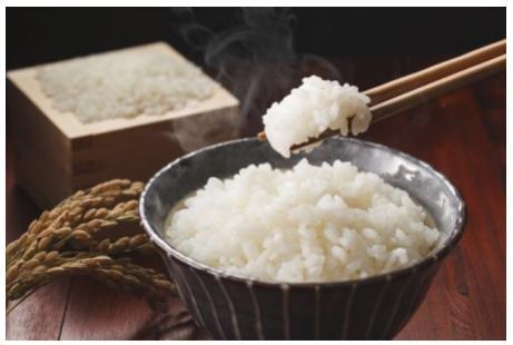 佐賀県産米さがびより 1年分60kg(1俵)