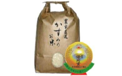 美濃加茂産のお米(20kg)