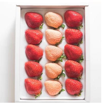 2つの色と味わいが楽しめる!紅白いちごギフト箱(計12-15粒)