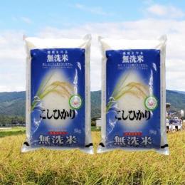 鳥取のうまい米(無洗米)