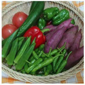 野菜7種のミニセット(ポン酢のおまけ付)