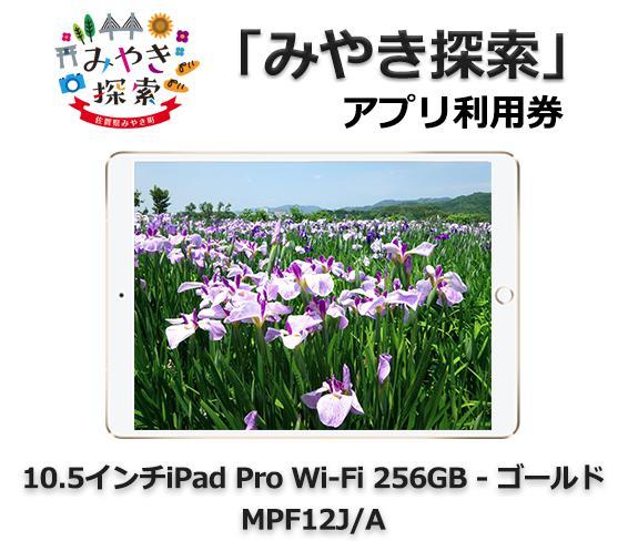 0.5インチiPad Pro Wi-Fi 256GB - ゴールド MPF12J/A