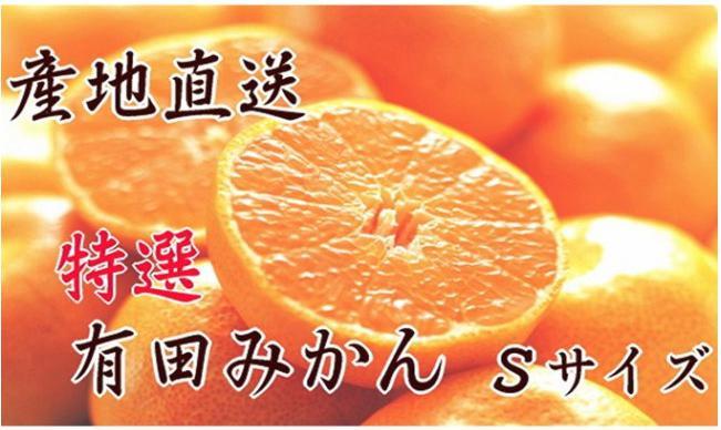 【産地直送】特選 有田みかん Sサイズ 5kg