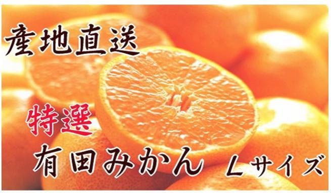 【産地直送】特選 有田みかん Lサイズ 5kg