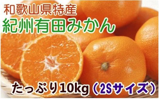 [厳選]紀州有田みかんたっぷり10kg(2Sサイズ)