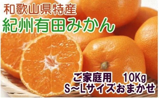 紀州有田みかんたっぷり10kg (S~L)ご家庭用