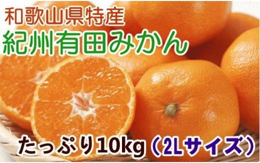味自慢 紀州有田みかん赤秀2Lサイズ10kg