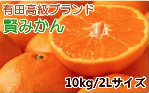 味自慢 有田賢みかん赤秀2Lサイズ10kg