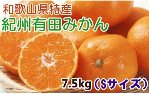 【厳選・産直】紀州有田みかん7.5kg(Sサイズ・赤秀)