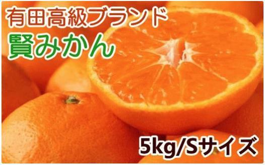 有田みかんのブランド「賢みかん」5kg(Sサイズ・赤秀)