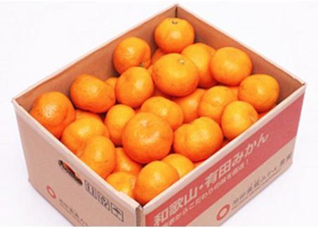 【特別栽培】濃厚 有田みかん7.5kg サイズおまかせ