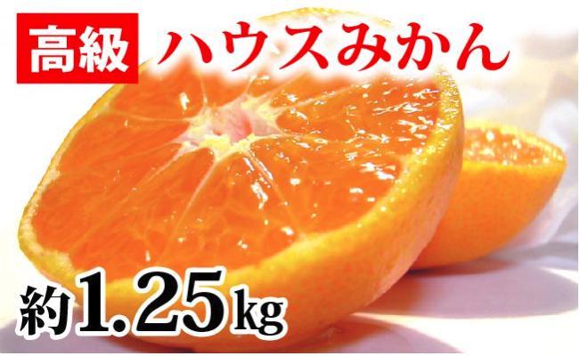【高級】ハウスみかん 1.25kg(2S~L) 紀州グルメ市場