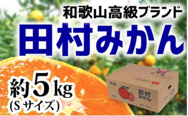 【和歌山ブランド】人気の田村みかん 5kg(Sサイズ)