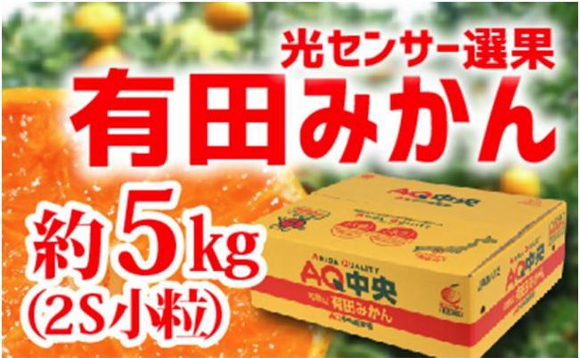 【秀選品】有田みかん 光センサー選果 5kg(小粒2S)
