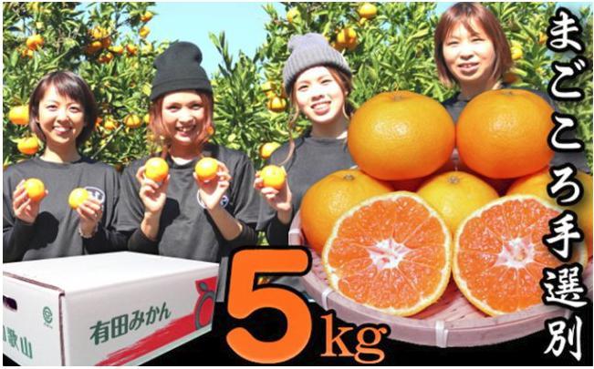 【まごころ手選別】和歌山の有田みかん 5kg 小玉 2S・Sサイズ混合