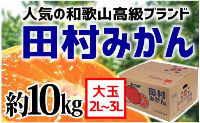 【和歌山ブランド】田村みかん たっぷり10kg(2L・3L)