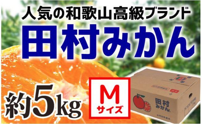 【和歌山ブランド】人気の田村みかん 5kg(Mサイズ)