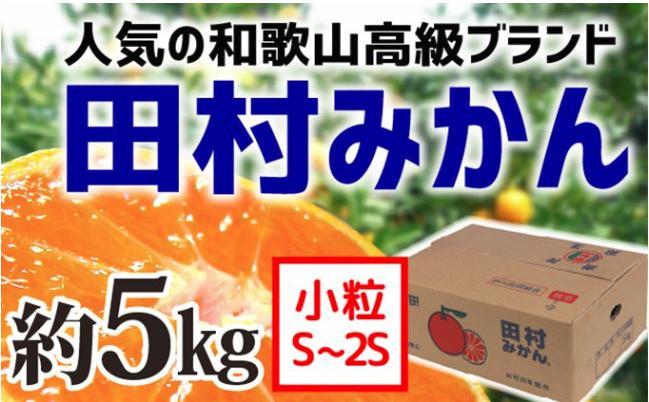 【和歌山ブランド】人気の田村みかん5kg(2S・3S)