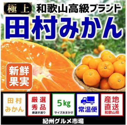 【和歌山ブランド】人気の田村みかん5kg(S~L)