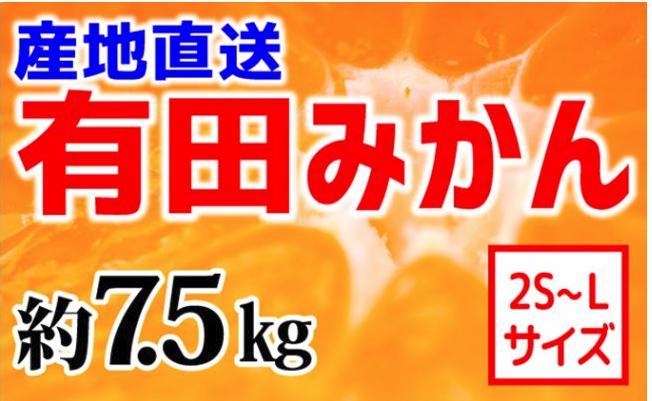 【産地直送】有田みかん 約7.5kg(2S~L)