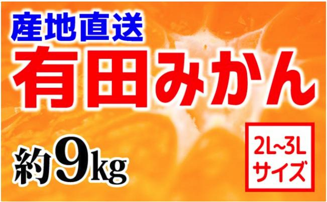 【産地直送】有田みかん 約9kg(大玉:2L~3L)