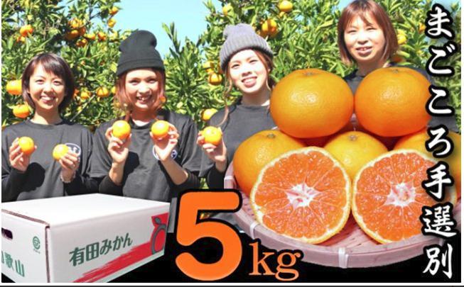 【まごころ手選別】和歌山の有田みかん 5kg Lサイズ