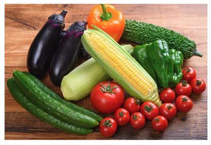 【高知県産】栽培期間中農薬不使用・季節の野菜セット(2~3人用)(高知県香美市)