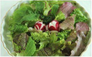 有機JAS(日本農林規格)認定★ サガンベジの美味しい満足サラダ・ミニセット(B2)