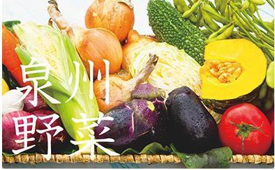 季節の泉州野菜セット(小)