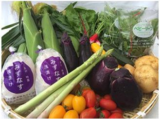 泉州TONOファームの季節の野菜と自家製お漬物セット(小)