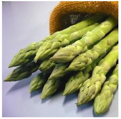 佐賀県産アスパラガス 約1kg(約20~33本入)