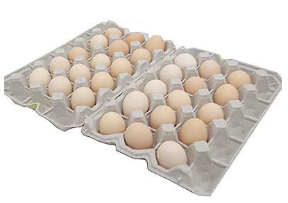 【地元ブランド】大分うこっけい卵30個