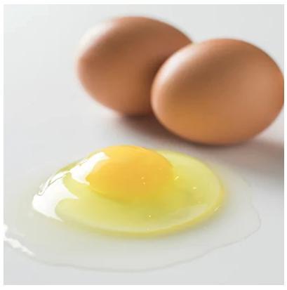 小林農園の平飼い自然卵(有精卵)25個