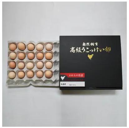 熊本県宇城市うこっけい卵20個