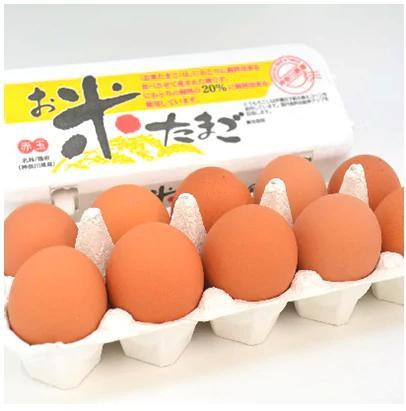 【愛川ブランド】お米たまご10kg