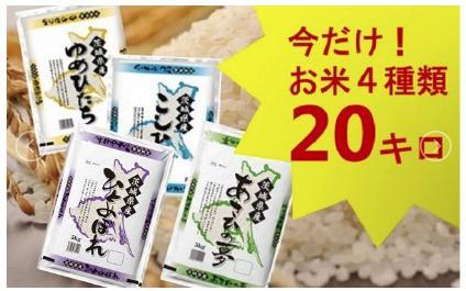 【平成30年産】茨城県のお米4種食べくらべ20kgセット(道の駅さかいオリジナルセレクション)