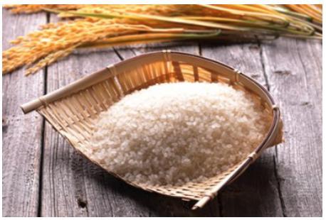 ななつぼし(精米) 15kg