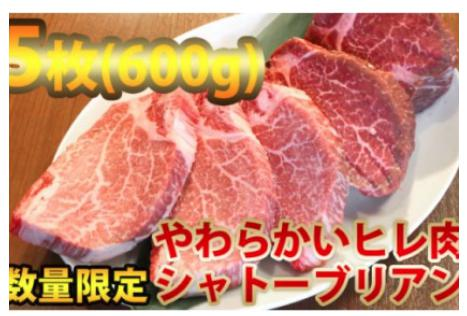 ヒレステーキ(シャトーブリアン)600g