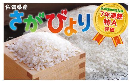 8年連続・食味特Aのお米「さがびより」 10kg 【心も晴れやか、佐賀日和】