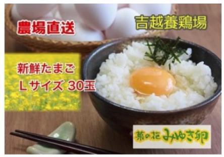 農場直送「菜の花みゆき卵」L玉30個入(長野県飯山市)