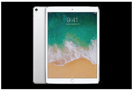 iPad Pro 10.5インチ Wi-Fi 256GB (カラー:シルバー )Yukuhashi 3D スマホで飛び出す美術館インストール済み