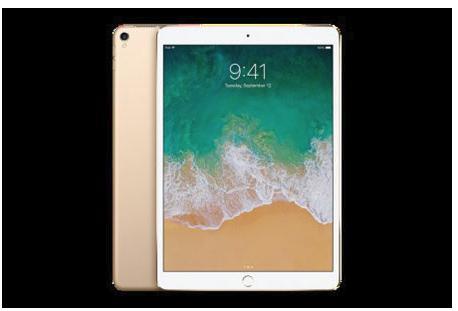 iPad Pro 10.5インチ Wi-Fi 256GB (カラー:ゴールド )Yukuhashi 3D スマホで飛び出す美術館インストール済み