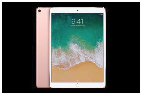 iPad Pro 10.5インチ Wi-Fi 256GB (カラー:ローズゴールド)Yukuhashi 3D スマホで飛び出す美術館インストール済み