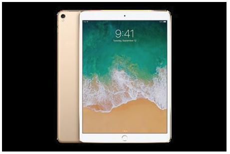iPad Wi-Fi 128GB (カラー:ゴールド )Yukuhashi 3D スマホで飛び出す美術館インストール済み