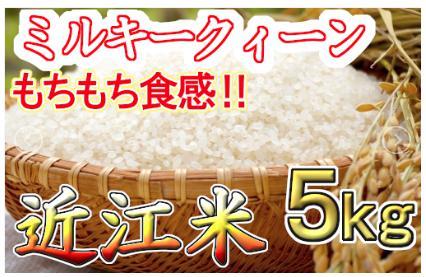 【平成30年度産】近江米 ミルキークィーン 白米5㎏(滋賀県近江八幡市)