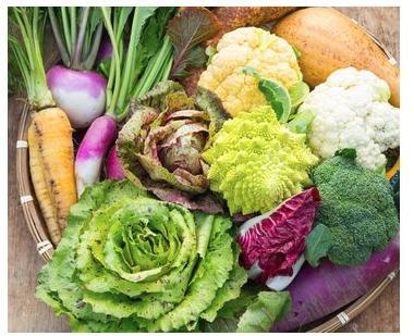 イタリア野菜セットS(7品)(佐賀県吉野ヶ里町)
