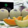 【ふるさと納税】夏に美味しい旬の果物の返礼品をご紹介!